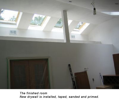 Skylight Cathedral Ceilings Gallery Skylight