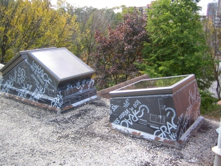 Green Roof Skylights